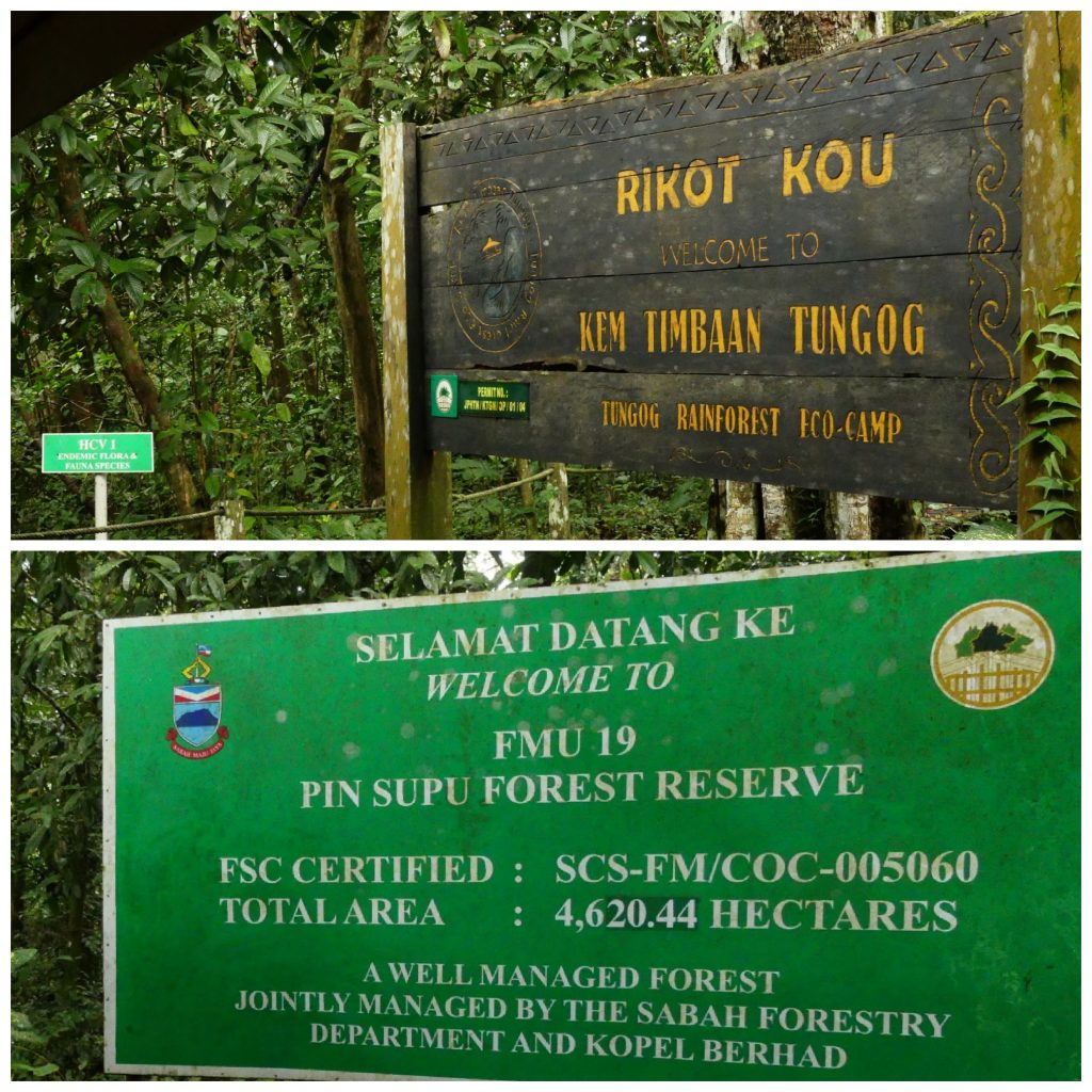 managed by community-owned eco-tourism in Kinabatangan